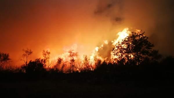 Incendio forestal en la Serra de San Mamede en octubre de 2017