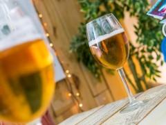 La cerveza, una bebida en 'peligro de extinción' por el cambio climático