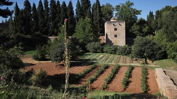 Patronato de la Alhambra