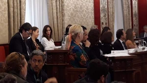 Belmonte responsabilitza Pavón que el PP tinga l'Alcaldia d'Alacant per no restituir-li els seus drets com a regidora