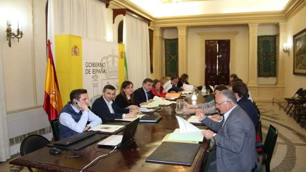Comisión Provincial del PFEA