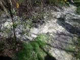 Imagen del río Brandelos remitida por el BNG tras su visita a la mina de Touro