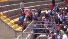 Un enjambre de abejas ataca a unos niños en Castellón