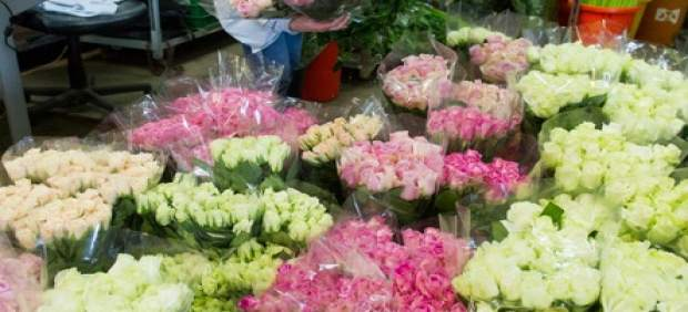 Rosas de Sant Jordi en Mercabarna