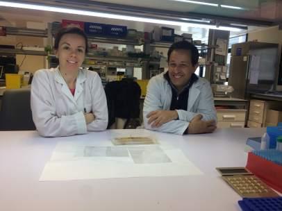 [Comunicacionumu] Universidad De Murcia: Un Estudio De La Umu Muestra La Necesar