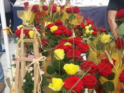 Rosas rojas y amarillas.