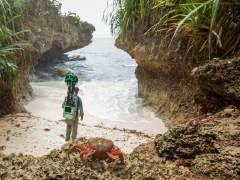 Así es la vida en Christmas, la isla salvaje que Google ha filmado