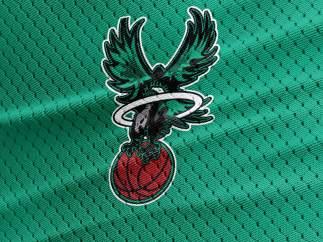 Escudos de selecciones, al estilo NBA