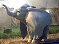 Filtrada la primera imagen del 'Dumbo' de Tim Burton