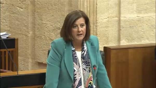 Sánchez Rubio,  en el Pleno del Parlamento días atrás.
