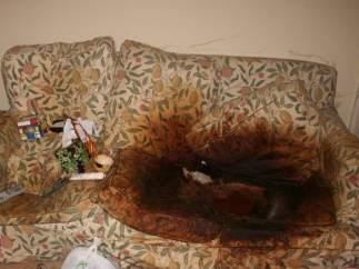 El sofá en el que fue encontrada la víctima