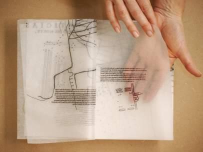 Obra de la artista Carme Nogueira incluida en la segunda edición del programa 'Mutaciones