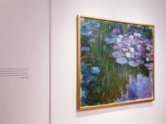 'Nenúfares en flor', de Claude Monet