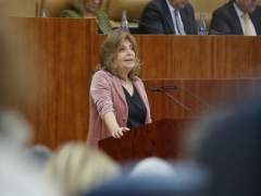 Garrido quiere empezar a tramitar la bajada fiscal en sucesiones o IRPF para cuidadores de hijos