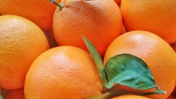 Calendario de los alimentos de temporada en España: ¿qué frutas y verduras deberíamos comer?