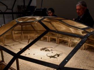 'Arte vivo' en el Guggenheim de Bilbao