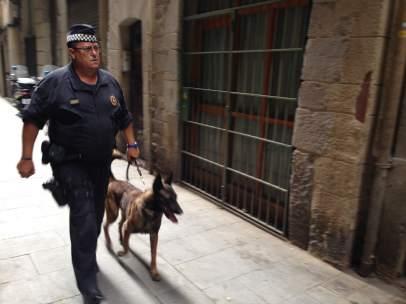 Mosso y perro en una operación en Barcelona.