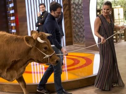 Una vaca en MasterChef