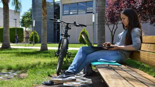 La UPV, líder en espanyol de la plataforma de cursos de Harvard i el MIT