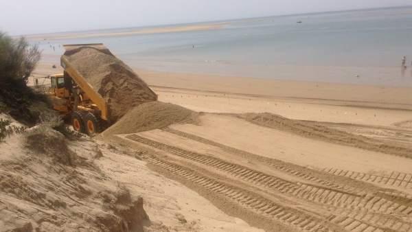 Actuación de Costas en una playa de Huelva.