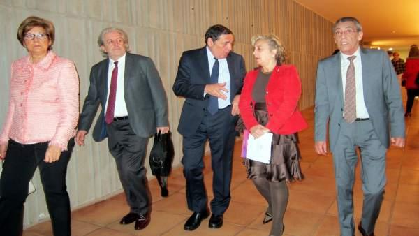 Sáez Aguado a la llegada a la reunión de la Red Centinela.