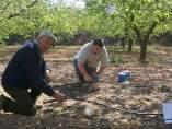 Agricultor, Riego, Cultivo, Campo,