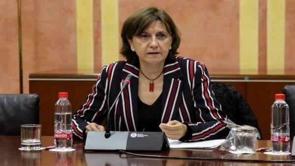 EMELINA FERNÁNDEZ CONSEJO AUDIOVIDUAL ANDALUZ