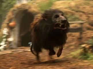 Los perros del infierno eran rottweilers