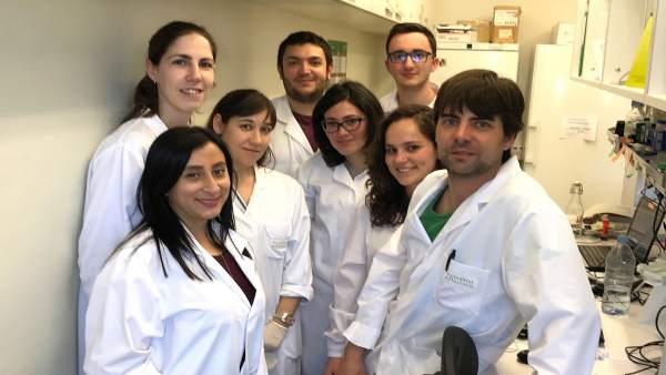 Proyecto de investigación sobre agentes virales