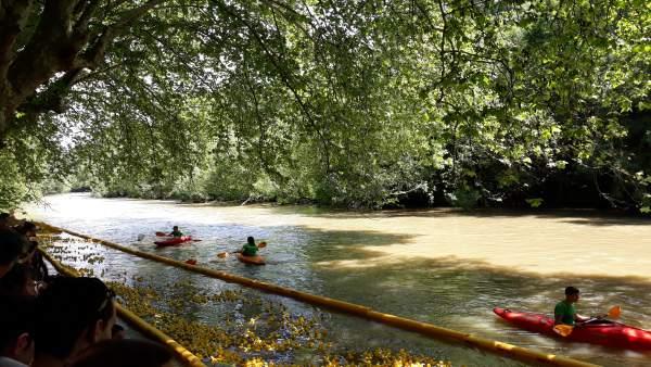 I Estropatada en el río Arga de Pamplona