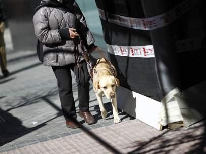 Personas ciegas con perro guía.