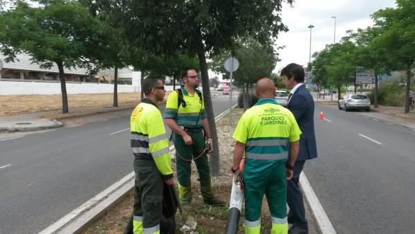 David Guevara junto a empleados encargados de la limpieza de zonas ajardinadas
