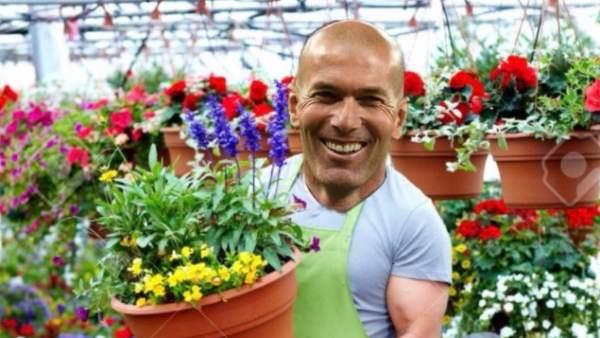 Memes de Zidane