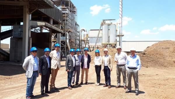 Visita a las instalaciones de Sacyr Industrial en Linares.