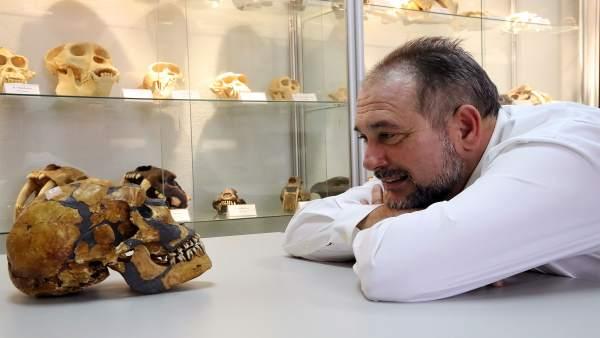 El profesor de la UMA Juan Antonio Pérez Claros muestra colección craneos
