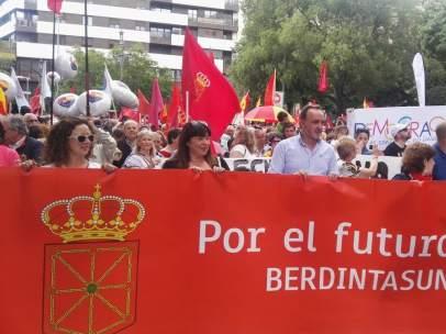 Manifestantes por las calles del centro de Pamplona