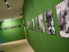 Exposición 'El bestiario de Picasso'