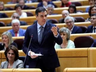 Pedro Sánchez, presidente del Gobierno, este martes en la sesión de control en el Senado.