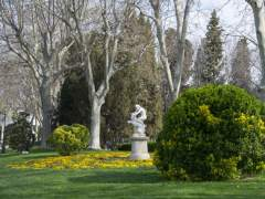 Vivir cerca de espacios verdes reduce el riesgo de padecer cáncer de mama, según un estudio