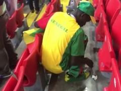 El gesto de la afición de Senegal limpiando su zona da la vuelta al mundo