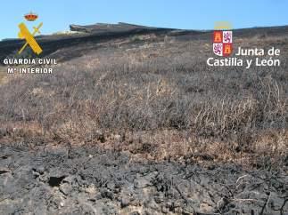 Burgos.- Terreno afectado por el incendio