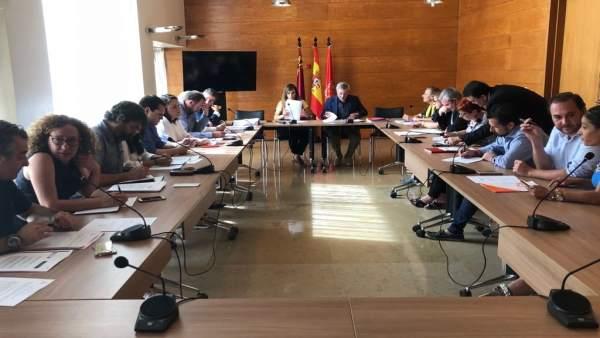 La Comisión de Pleno de Infraestructuras