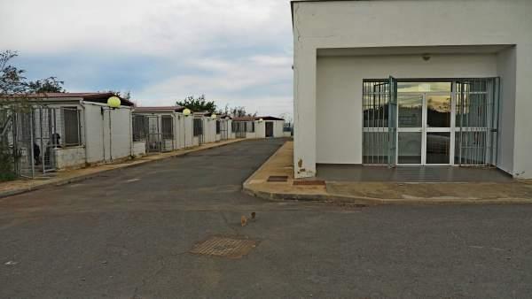 Refugio de animales en Valverde del Camino (Huelva)