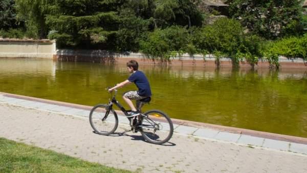Lago del Parc de la Creueta del Coll.