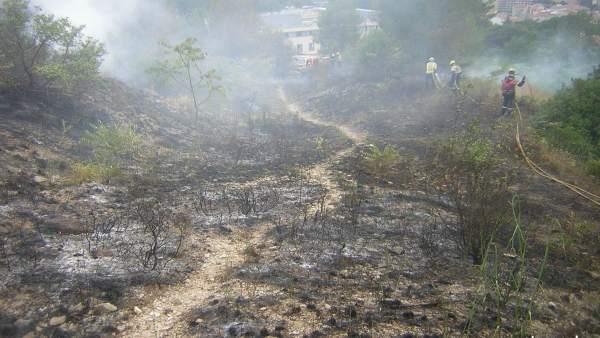 Incendio forestal en la zona de Torre Gironella en Girona