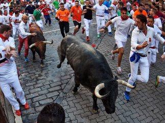 Apoyado en el toro