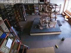 Una cámara de seguridad recoge cómo unos gatos notan un terremoto segundos antes de que se produzca