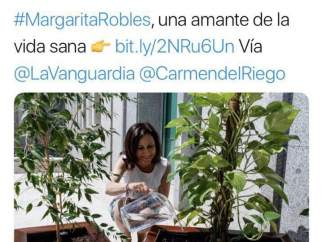 Tuit de Defensa sobre Margarita Robles