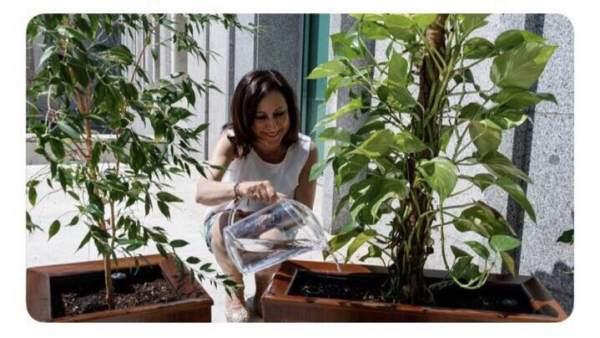 Tuit de Defensa sobre Margarita Robles