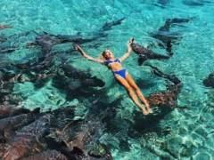 Una modelo instagramer es atacada por un tiburón mientras posaba para unas fotos